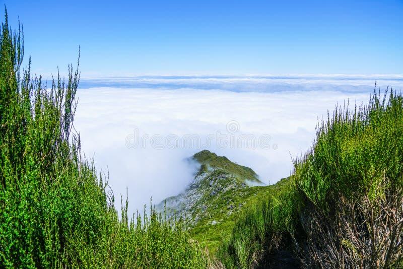 Landskap p? Pico de Ruivo i madeira royaltyfri fotografi