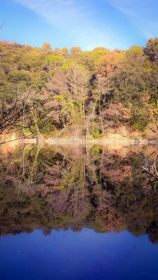 Landskap reflekterat på en sjö fotografering för bildbyråer