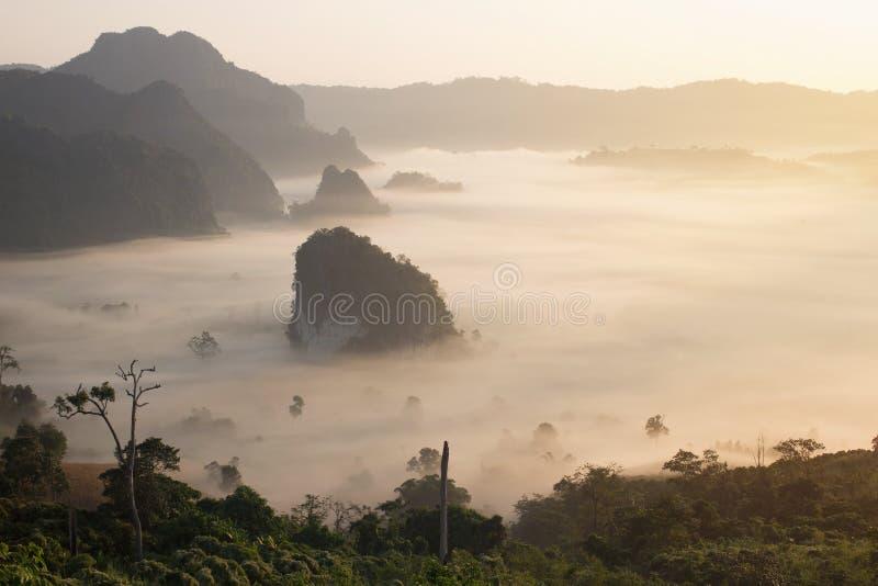 Landskap sikten av berget för kaen för Phu langkalang i morgontid arkivbilder