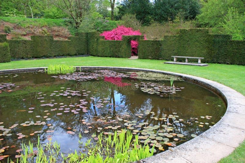 Landskap trädgård royaltyfri bild