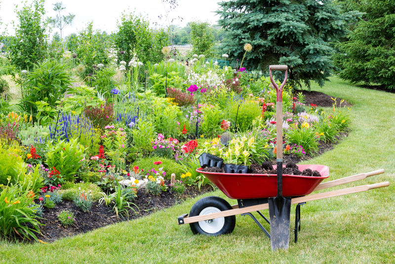 Landskap trädgården arkivfoton