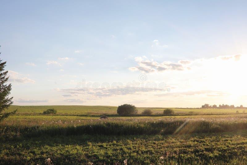 Landskap utanför staden gräs- sky för blått fält Solnedgång ov arkivfoton