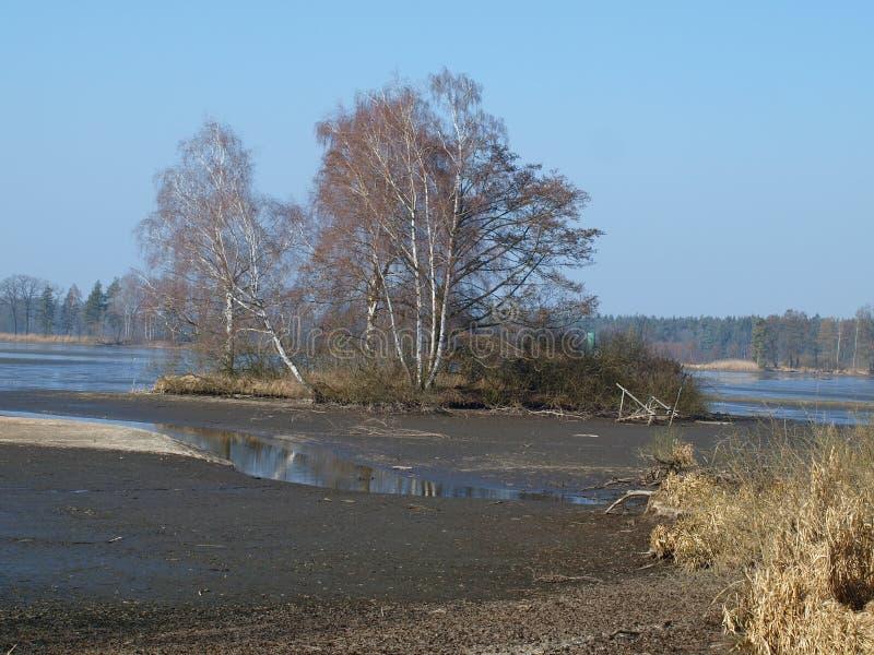 Landskapdamm, södra Bohemia arkivbild