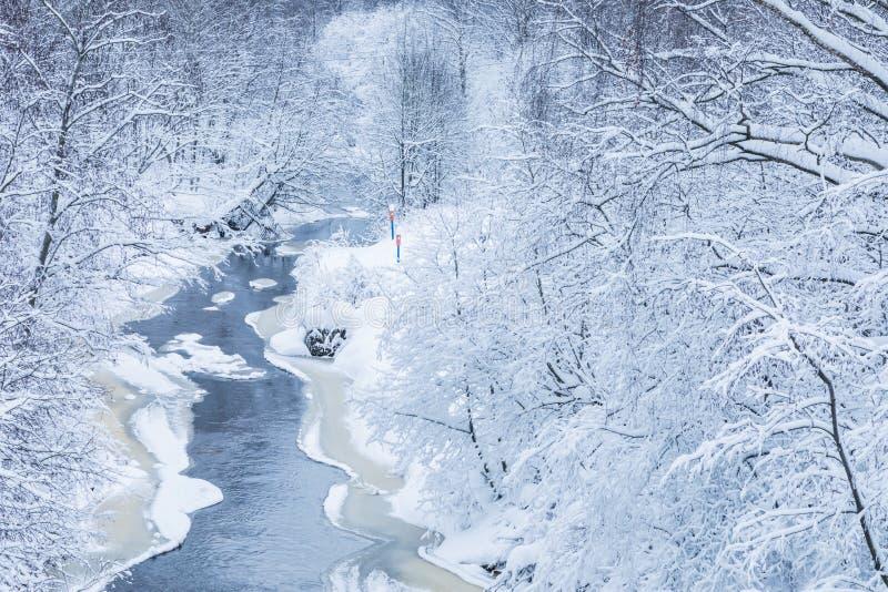 Landskapet av den lilla floden eller bäcken i den härliga vinterskogen eller i parkerar arkivfoton