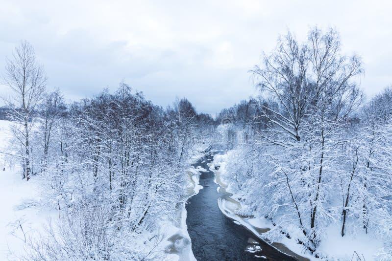 Landskapet av den lilla floden eller bäcken i den härliga vinterskogen eller i parkerar royaltyfria bilder