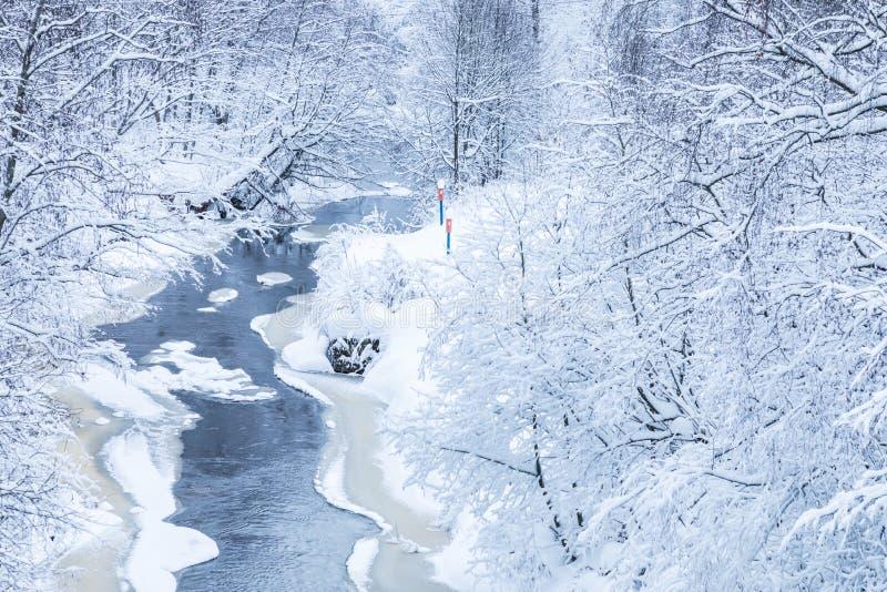 Landskapet av den lilla floden eller bäcken i den härliga vinterskogen eller i parkerar fotografering för bildbyråer