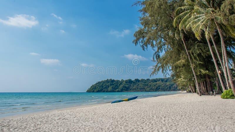Landskapet av den trevliga tropiska stranden med kokosnöten gömma i handflatan trädet ferie- och sommarsemesterbegrepp royaltyfria bilder