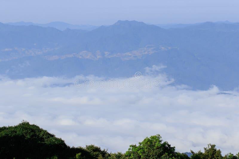 Landskapet av skogen för dimma för högt berg den dolda fotografering för bildbyråer