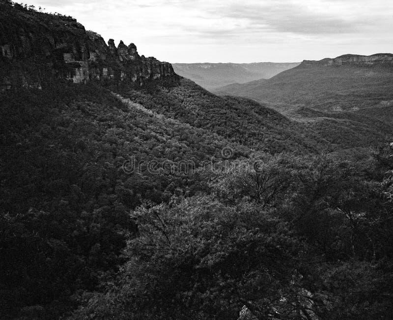 Landskapet av tre systrar vaggar bildande på Katoomba blåa berg New South Wales Australien i monokrom med skogen royaltyfri fotografi