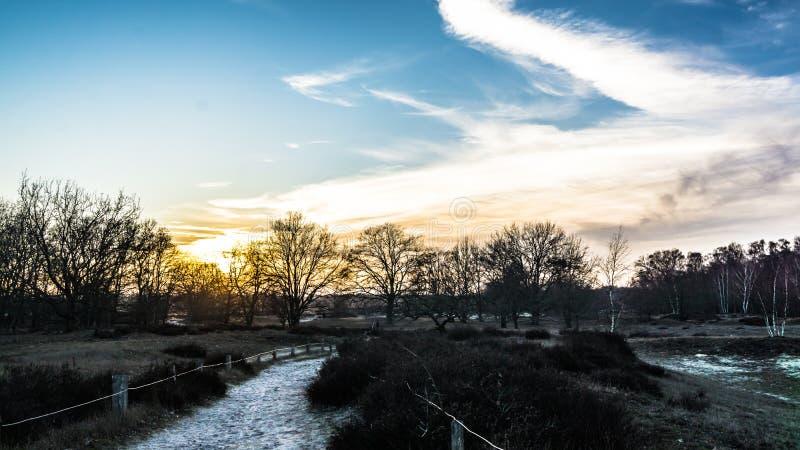 Landskapet i Boberger dyner vid solnedgången på vintern royaltyfria foton