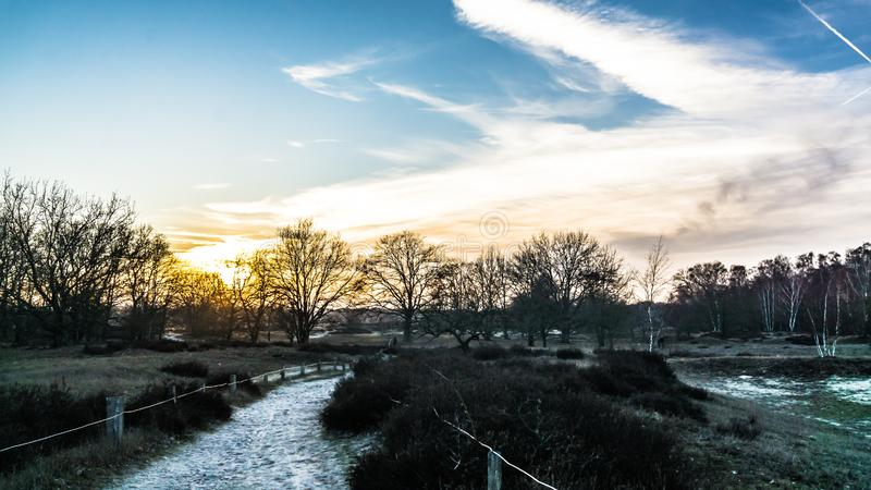 Landskapet i Boberger dyner vid solnedgången på vintern arkivbilder