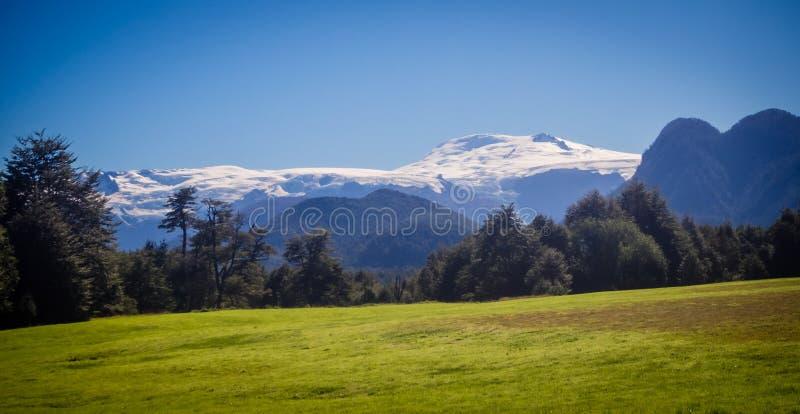 Landskapet i naturliga Pumalin parkerar Patagonia, Chile i summe royaltyfri fotografi