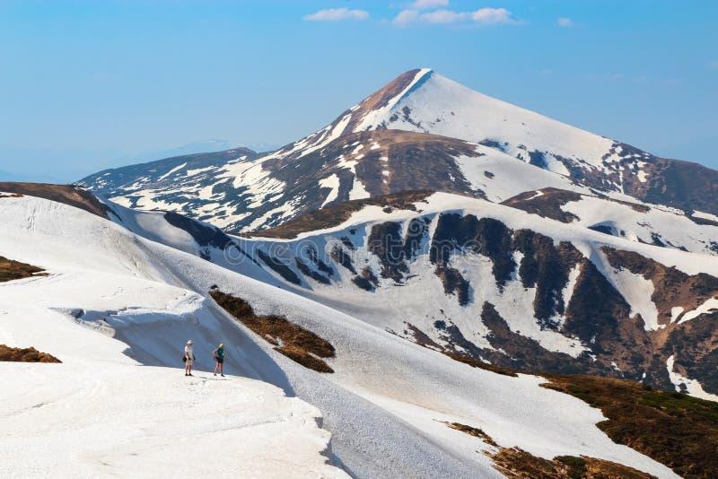 Landskapet med ängarna, de höga bergen och maxima som täckas med snö Stället av turister vilar Carpathians Ukraina Europa royaltyfria foton