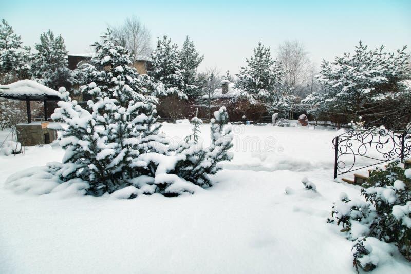 Landskapet med grillfestområde, snowbanks av vit snö, sörjer träd i landsträdgård royaltyfria bilder