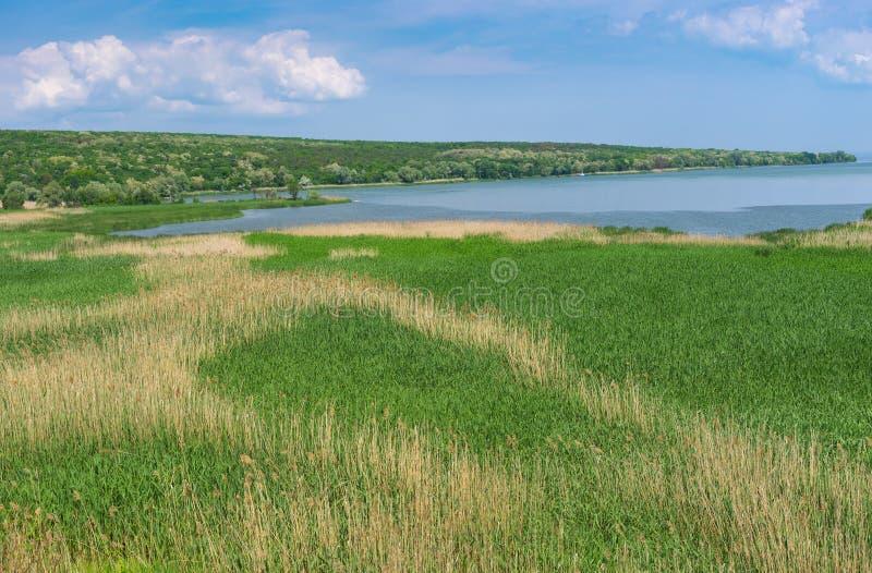 Landskapet med rusar fält på plats var den lilla floden Karachokrak flödar in i Dnepr, Ukraina royaltyfri foto