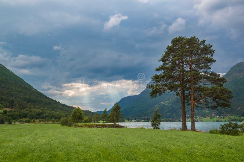 Landskapet med sörjer träd-, sjö- och stormhimmel, Norge royaltyfri bild