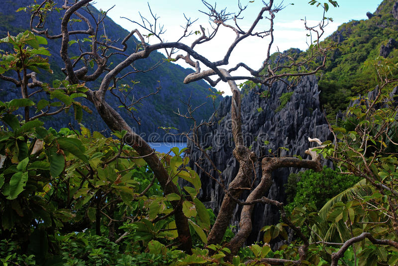 Landskapet med vaggar och blåttfjärden El Nido, Palawan ö, Filippinerna arkivfoton