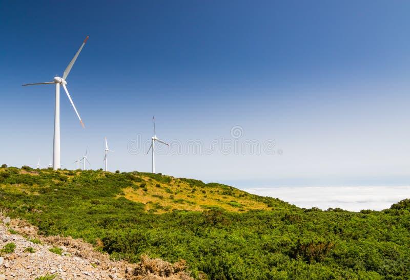 Landskapet och vindturbiner på platån Paul da Serra, madeira är arkivbild