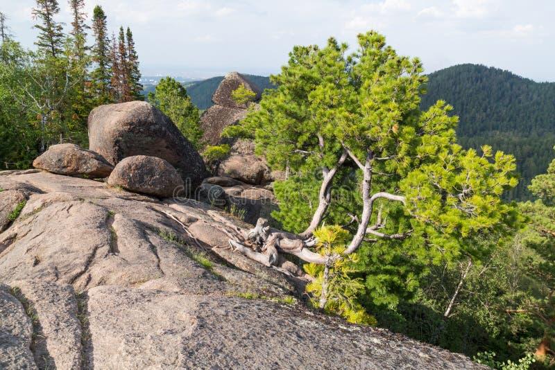 Landskapet parkerar Stolby, nära Krasnoyarsk royaltyfria bilder