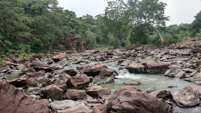Landskapflod, berg, skog, gröna träd som är fridsamma arkivfoton
