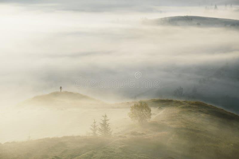 Landskapfotograf som tar bilder på dimmiga kullar arkivbilder