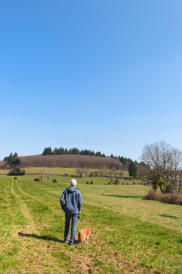 Landskapfranska Limousin royaltyfri foto