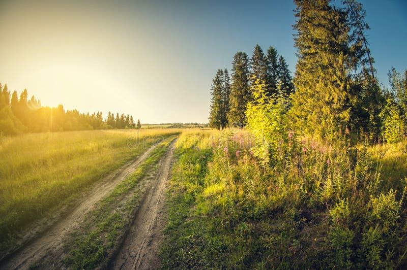 Landskapgrusväg i ett fält på den avlägsna solnedgången som lämnar, lins för distorsionsperspektivfisheye royaltyfria foton