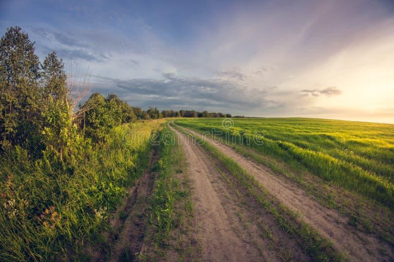 Landskapgrusväg i ett så fält på solnedgången arkivfoto