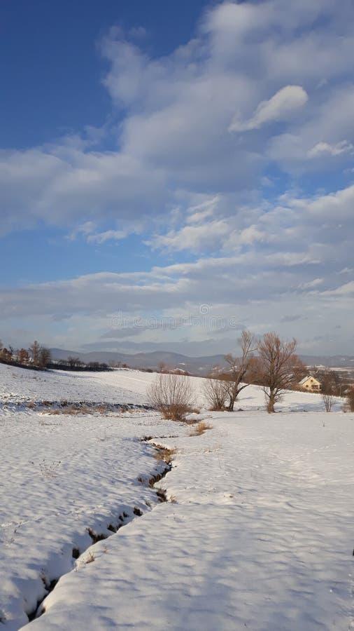Landskaphus på blå himmel för solig dag royaltyfri fotografi