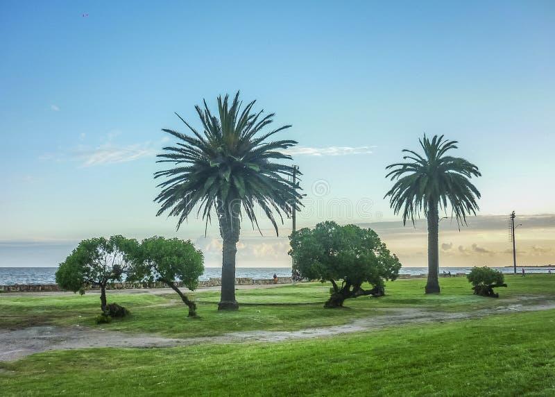 Landskapkust av Montevideo royaltyfria bilder