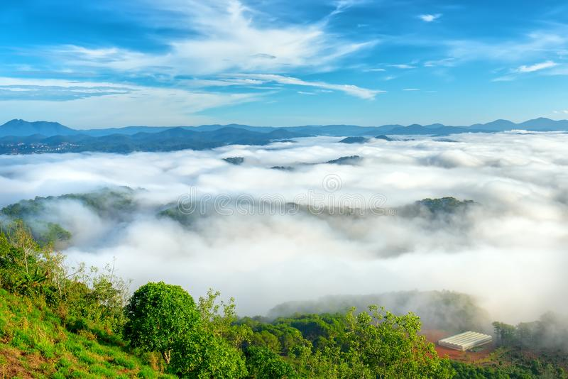Landskapmorgondimma täckte dalen royaltyfri fotografi