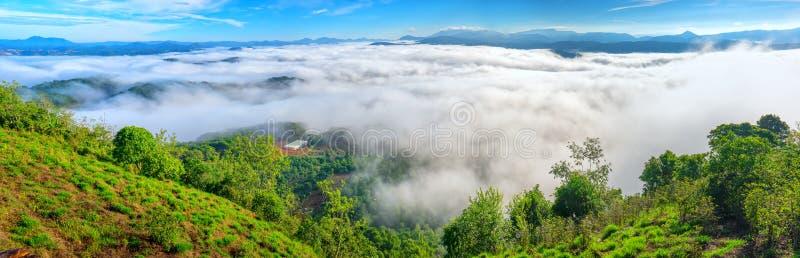 Landskapmorgondimma täckte dalen arkivfoton