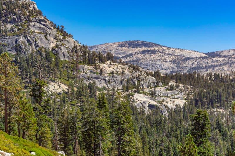 Landskapnatur i den Yosemite nationalparken arkivfoto