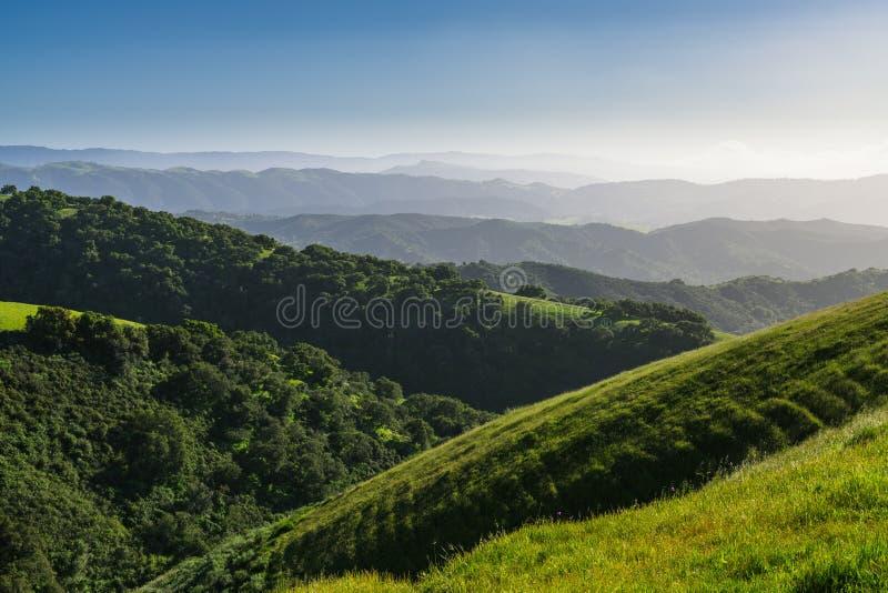 Landskapplats av frodiga gröna kullar, ängar, ekskogen och åtskilliga bergkanter som bleknar in i avståndet arkivfoton