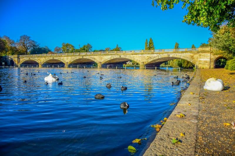 Landskapsikt av Serpentine Lake och Serpentine Bridge i Hyde Park, London, UK arkivfoto