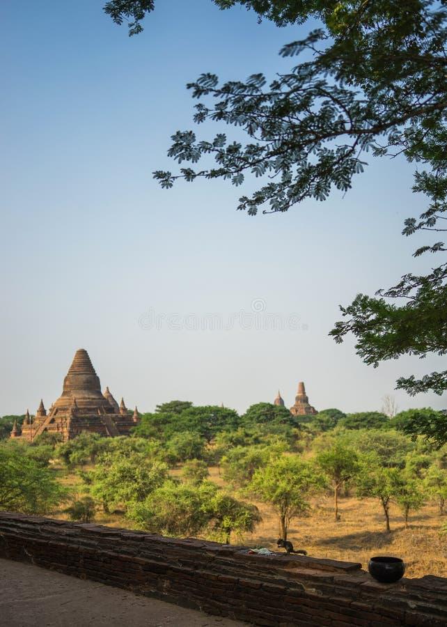 Landskapsikt för buddistisk tempel, Bagan-Myanmar arkivfoton