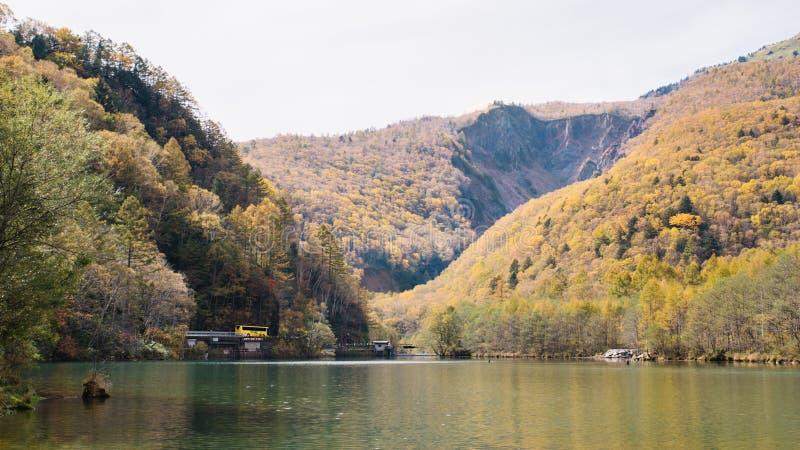Landskapsikten av berget, lämnar ändrande färg och sjön på den Kamikochi nationalparken med den turist- bussen royaltyfria bilder