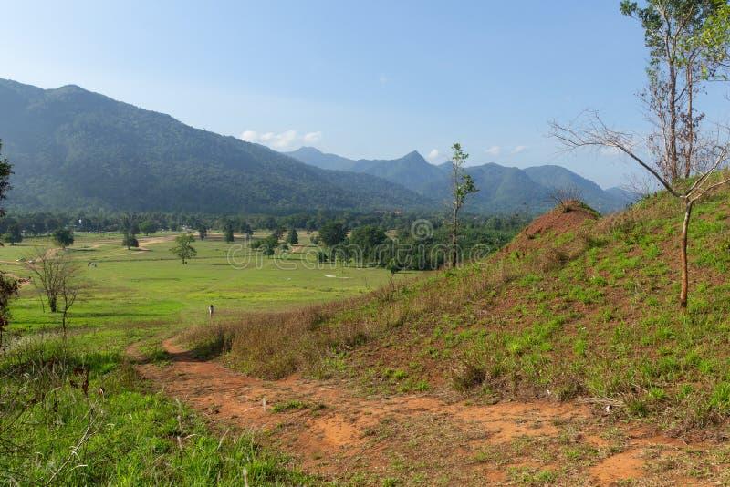 Landskapsynvinkel av gräsberget fotografering för bildbyråer