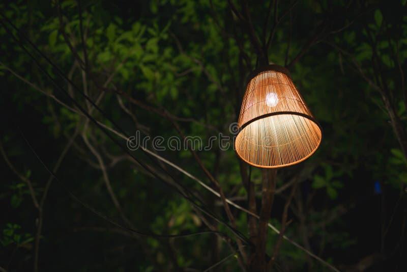 Landslampan royaltyfri foto