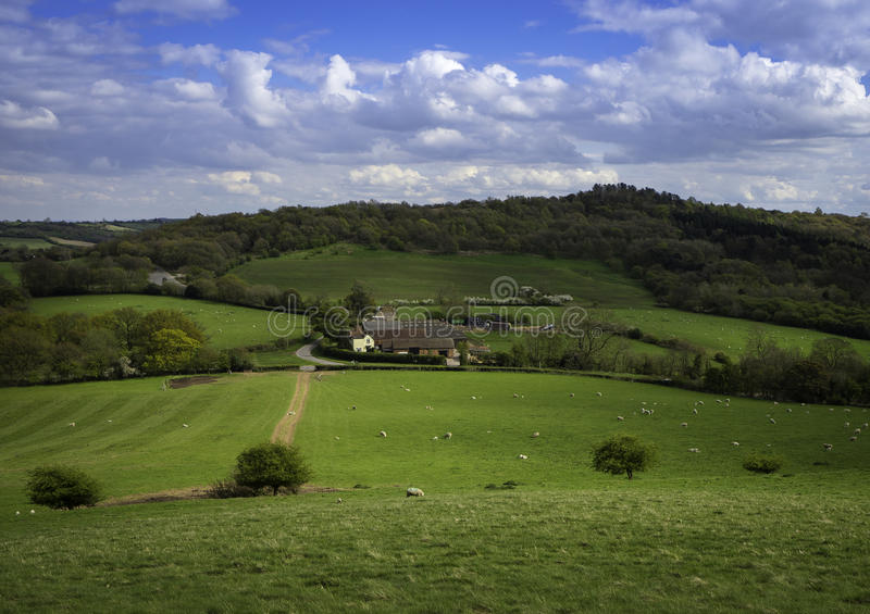 Landslantgården lokaliserade witin freldsna av Birmingham royaltyfri bild