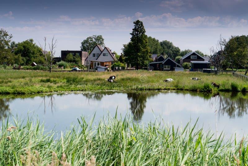 Landsmeer stockfotos