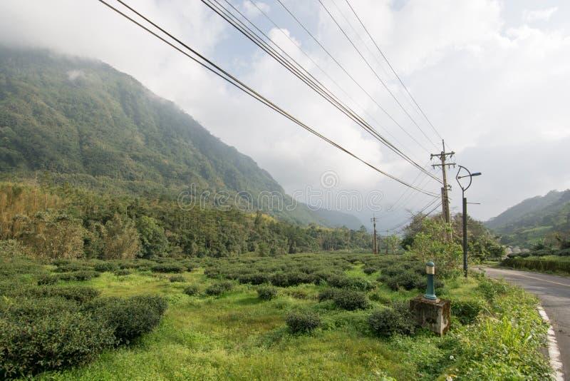 Landspace σε alishan στοκ εικόνες