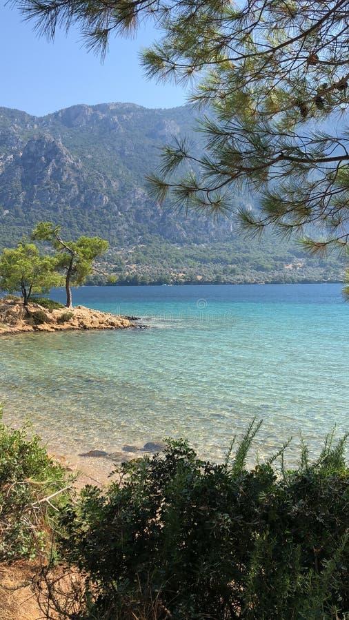 Landspace, mar, floresta e areias bonitos imagens de stock royalty free