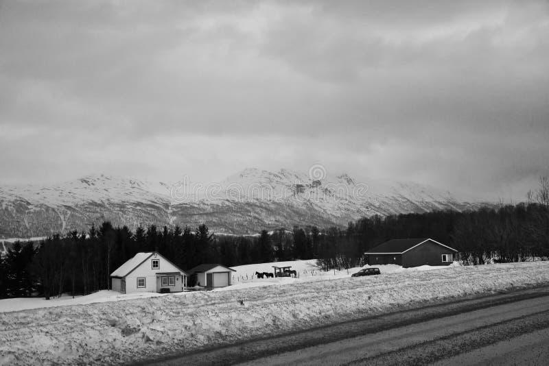 Landssidovinter i svartvitt arkivfoto