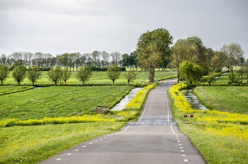 Landstraße in einem niederländischen Polder lizenzfreies stockfoto