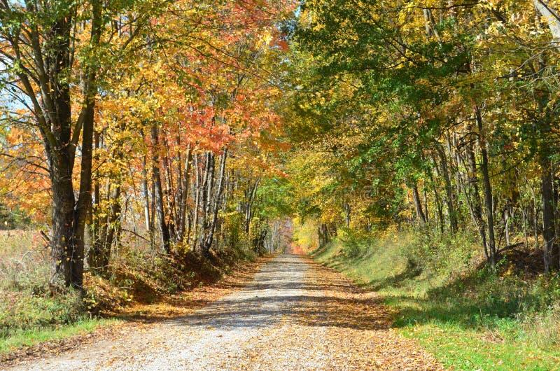 Landstraße an einem sonnigen Herbsttag stockbilder