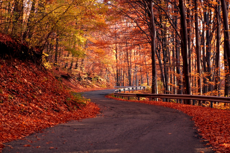 Landstraße im Herbst stockfoto