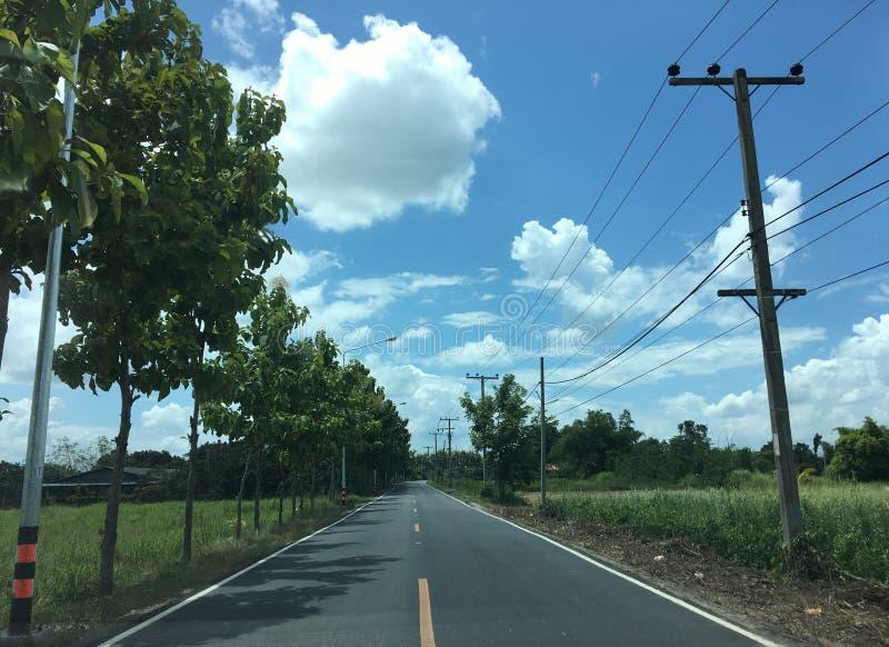 Landstraße mit Baum und elektrischer Pfosten dazu mit Reisfeld unter blauem Himmel und schöner Wolke lizenzfreie stockbilder