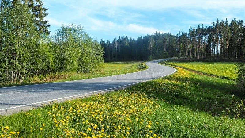 Landstraße in Schweden lizenzfreie stockbilder