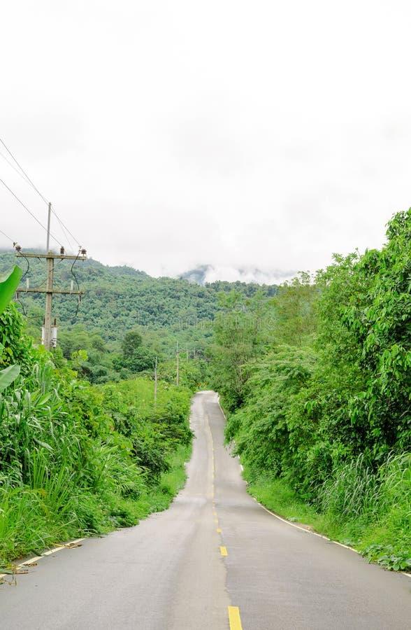 Landstraßekurve in den Büschen und in den Bäumen lizenzfreie stockbilder